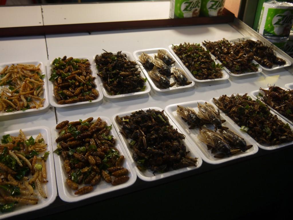 More Deep Fried Bugs at Chiang Rai Night Bazaar