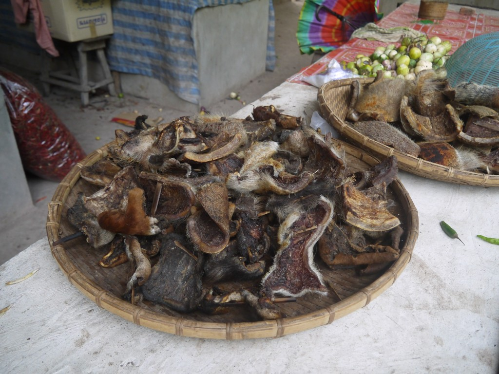 Buffalo Skin For Sale At Pakbeng Market, Laos