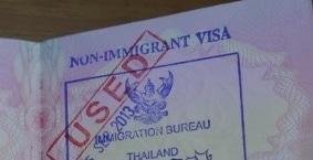 Non-Immigrant Visa