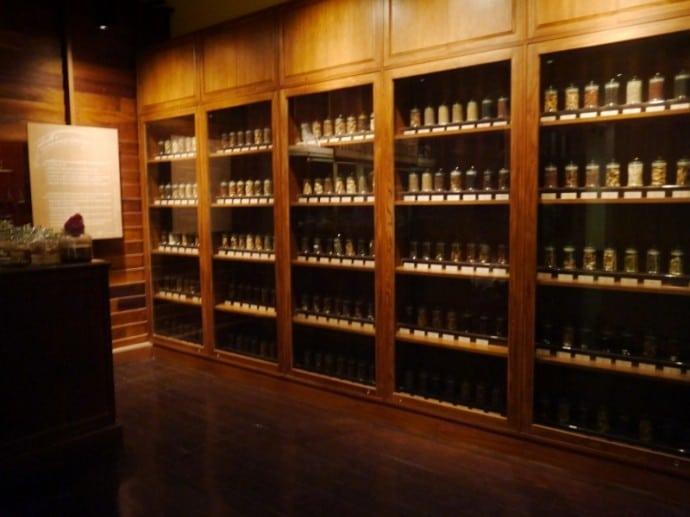 Thai Medicinal Herbs