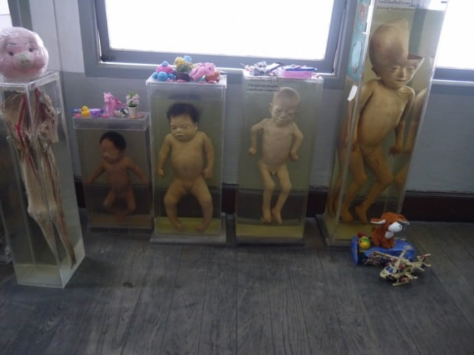 Some Visitors Leave Toys For These Children