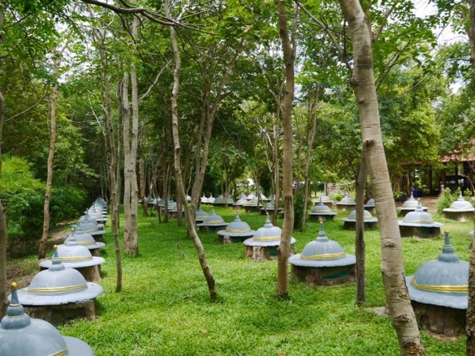 Elephant Graveyard At Wat Pa Arjiang