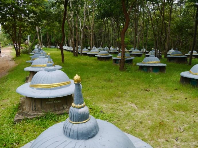 Elephant Graveyard At Ban Ta Klang, Surin, Thailand