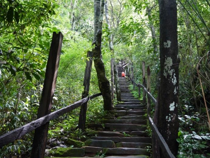 Stone Steps At Wat Phu Tok