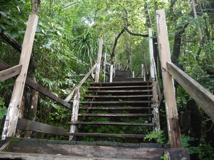 First Set Of Wooden Stairs At Wat Phu Tok