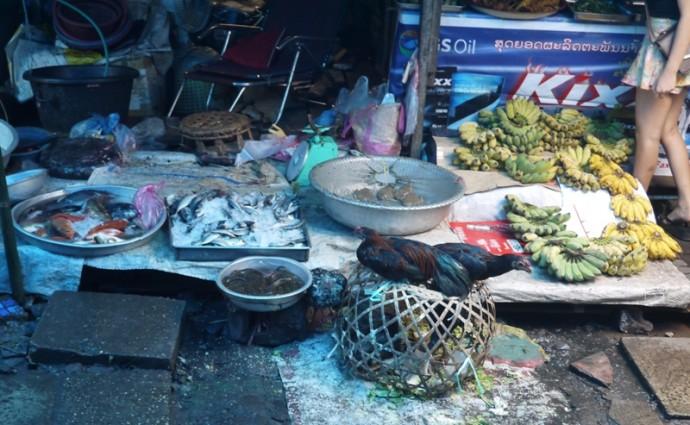 Live Chickens At Khua Din Market, Vientiane