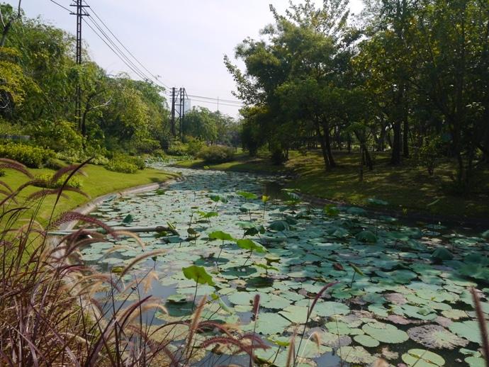 Bangkok parks, Queen Sirikit Park