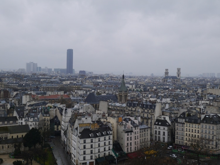 Montparnasse Tower, As Seen From The Towers Of Notre-Dame Cathedral