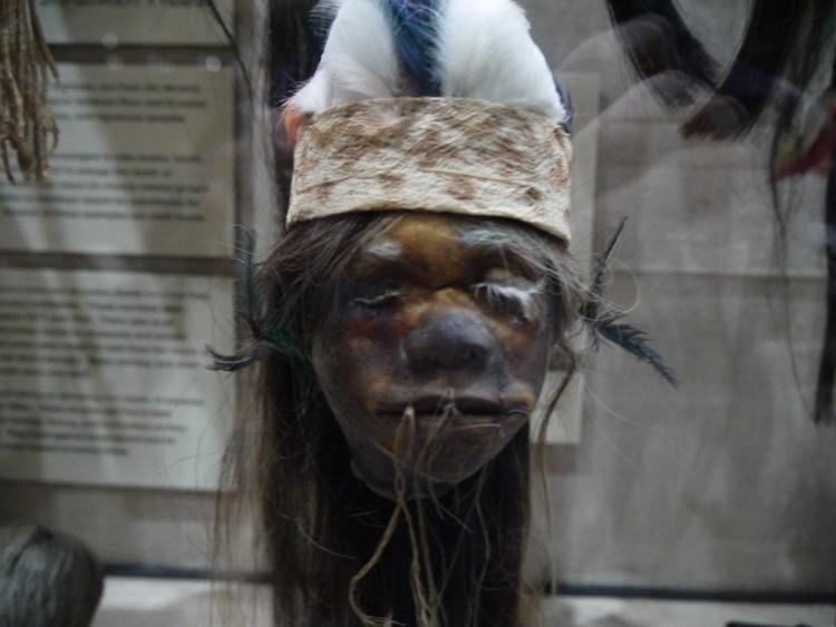 A Shrunken Head At Pitt Rivers Museum, Oxford