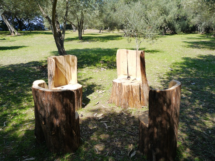 Seating For 4, Made From Tree Trunks, Lokrum Island