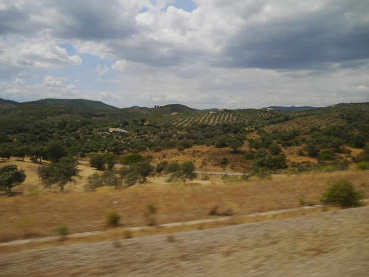 View From The Madrid To Seville Train