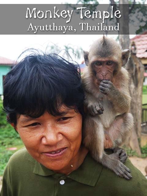 Monkey Temple, Ayutthaya, Thailand