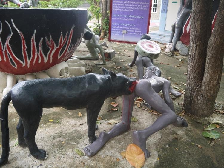 Attacked By An Animal At Wat Kai, Ayutthaya